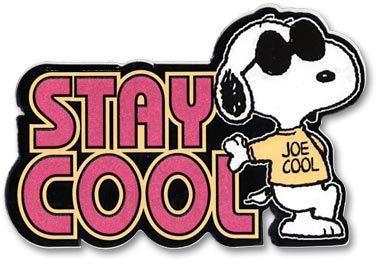 joe-cool