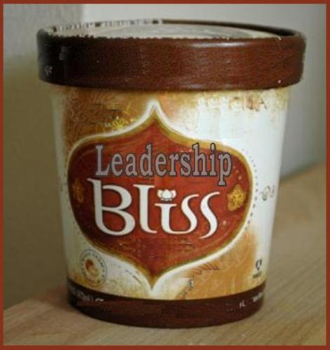 Leadership Bliss